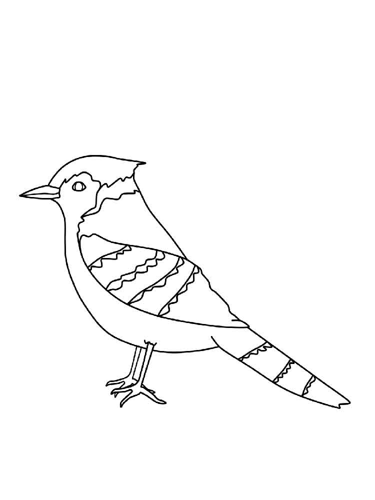 Blue Jay coloring pages. Download and print Blue Jay ...