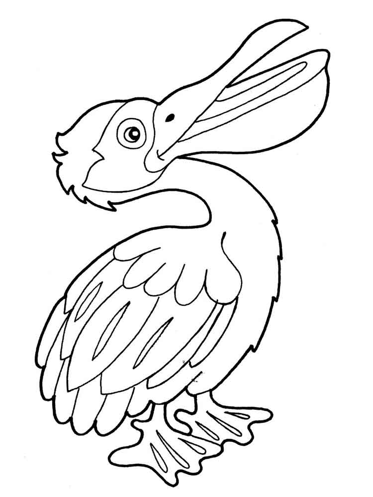 new orleans pelicans coloring pages - photo#35