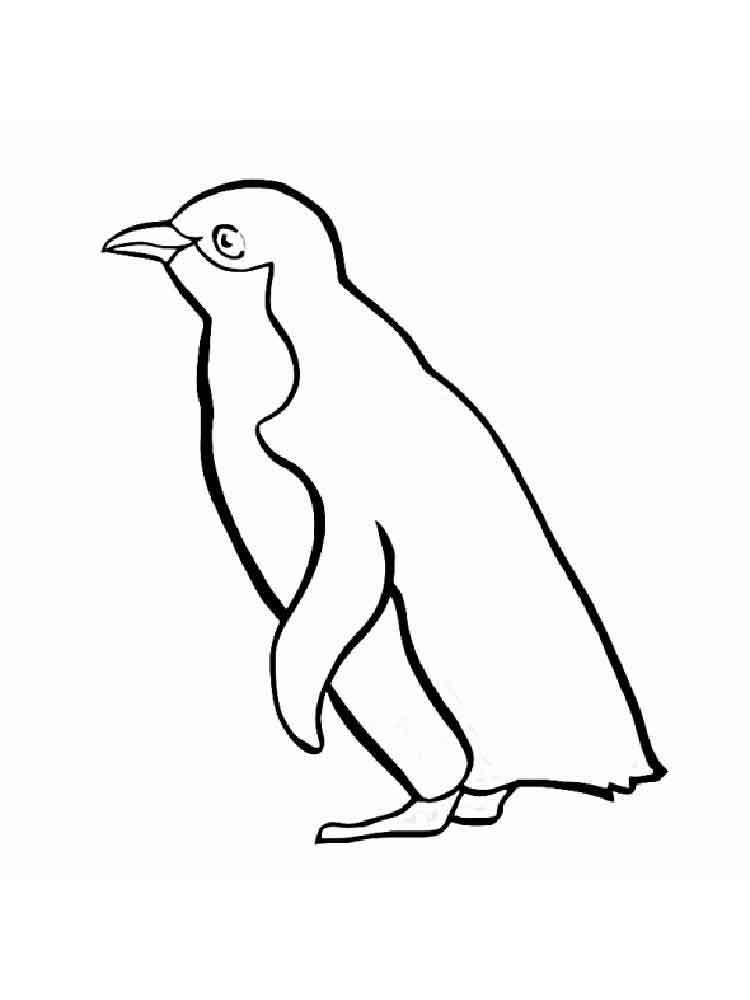 Penguins coloring pages Download