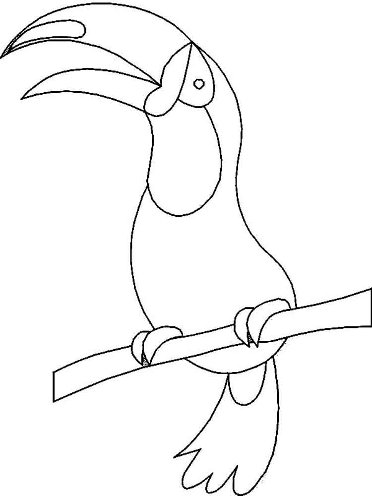 Coloring Pages 4 : Toucan coloring pages. download and print pages
