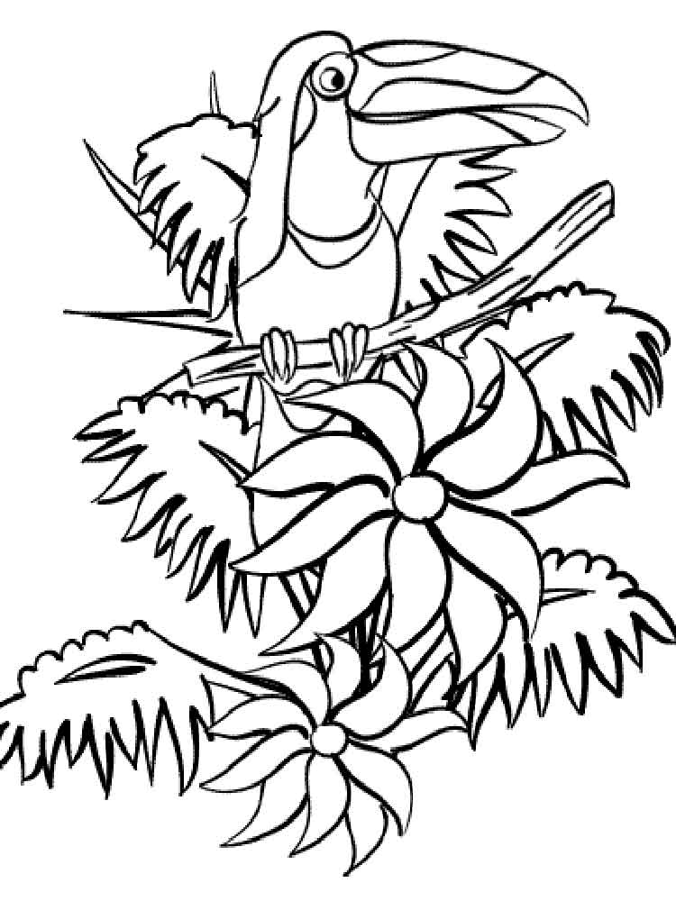 Toucan coloring pages. Download and print Toucan coloring ...