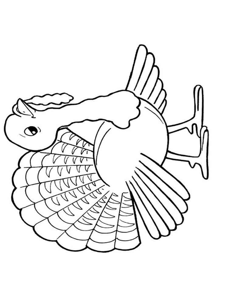 Turkeys coloring pages Download and print Turkeys