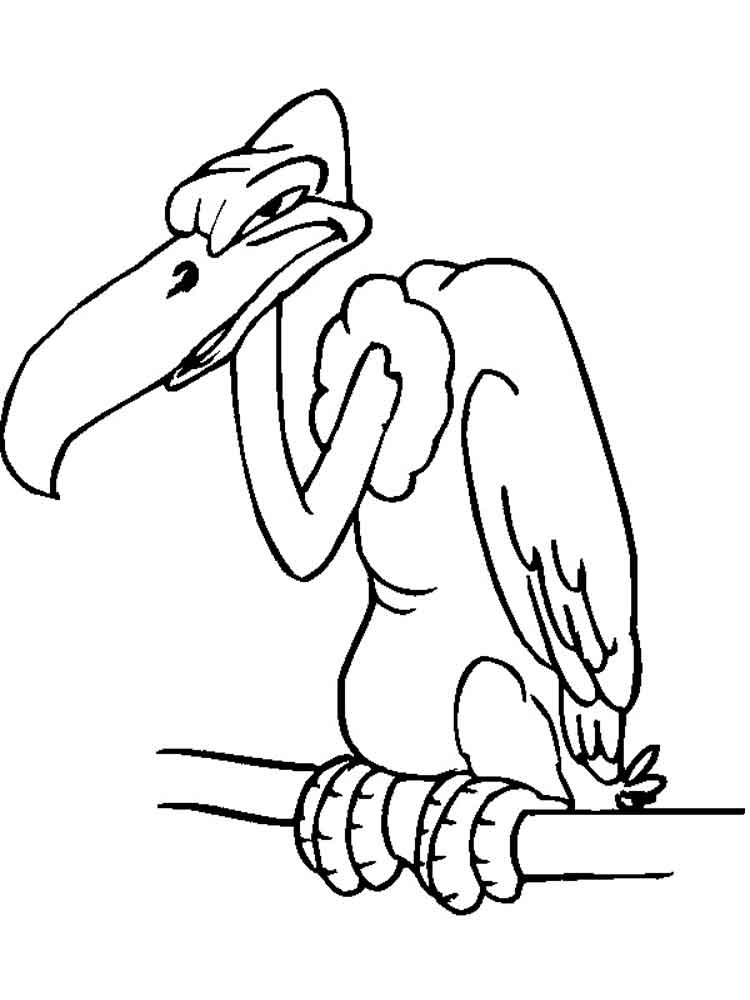 Vulture coloring pages Download