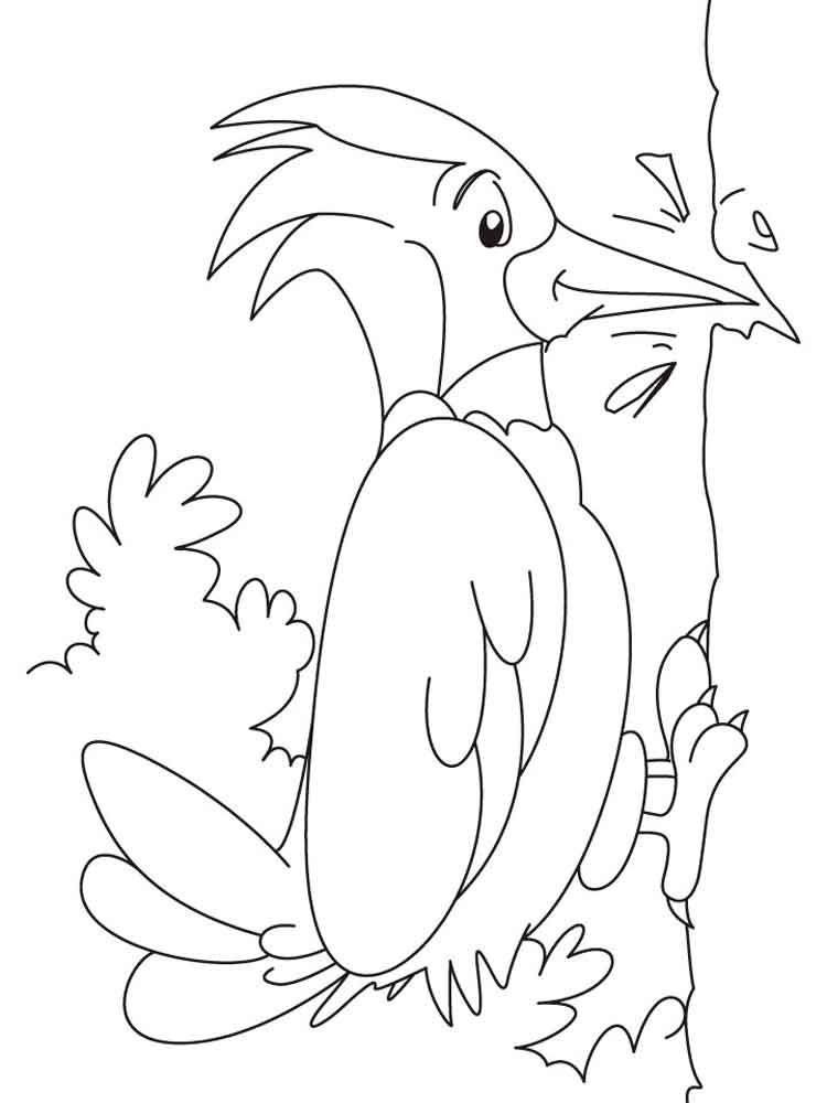 Woodpeckers Birds Coloring Pages 13