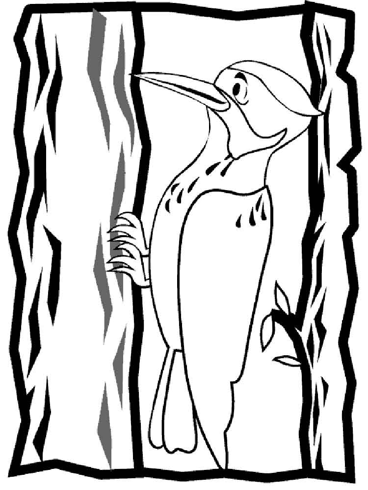 Woodpecker Bird Page Coloring Pages