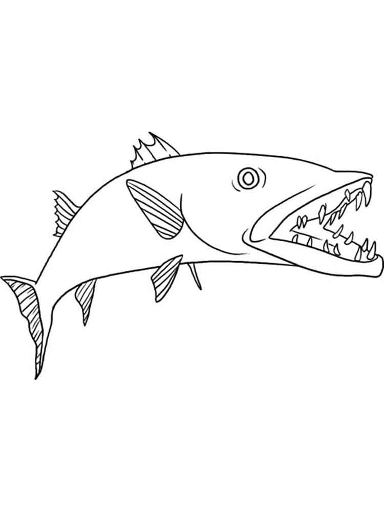 Barracudas Coloring Pages 6