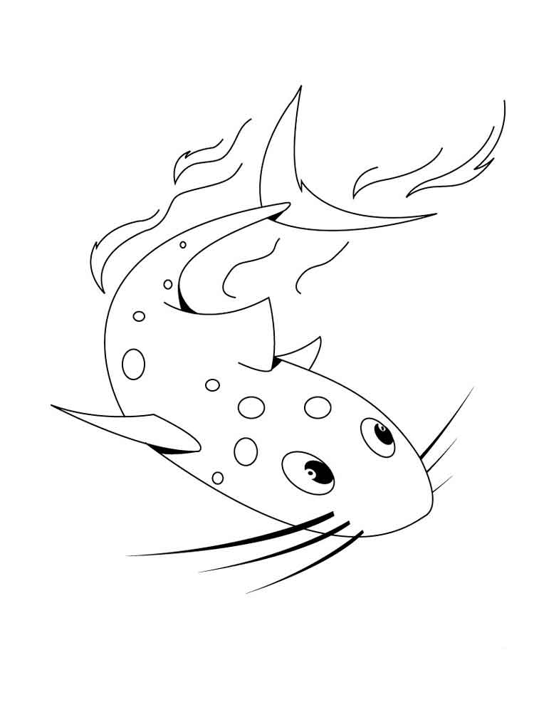 Catfish coloring pages Download