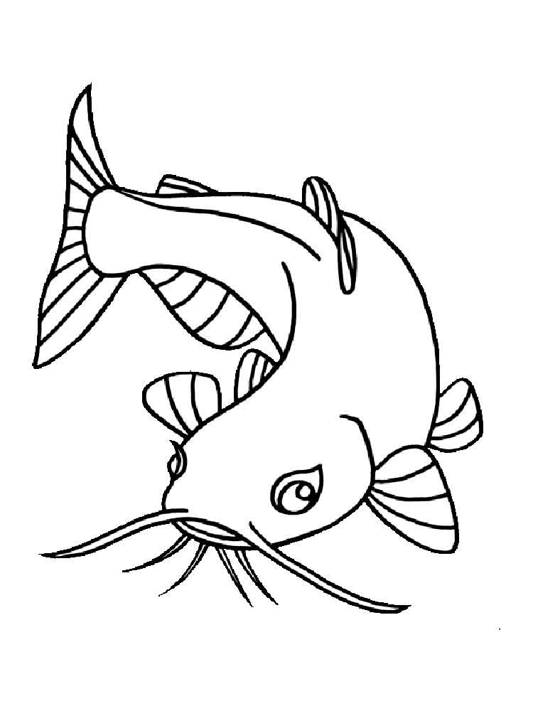 Catfish Coloring Pages on Betta Fish Clip Art