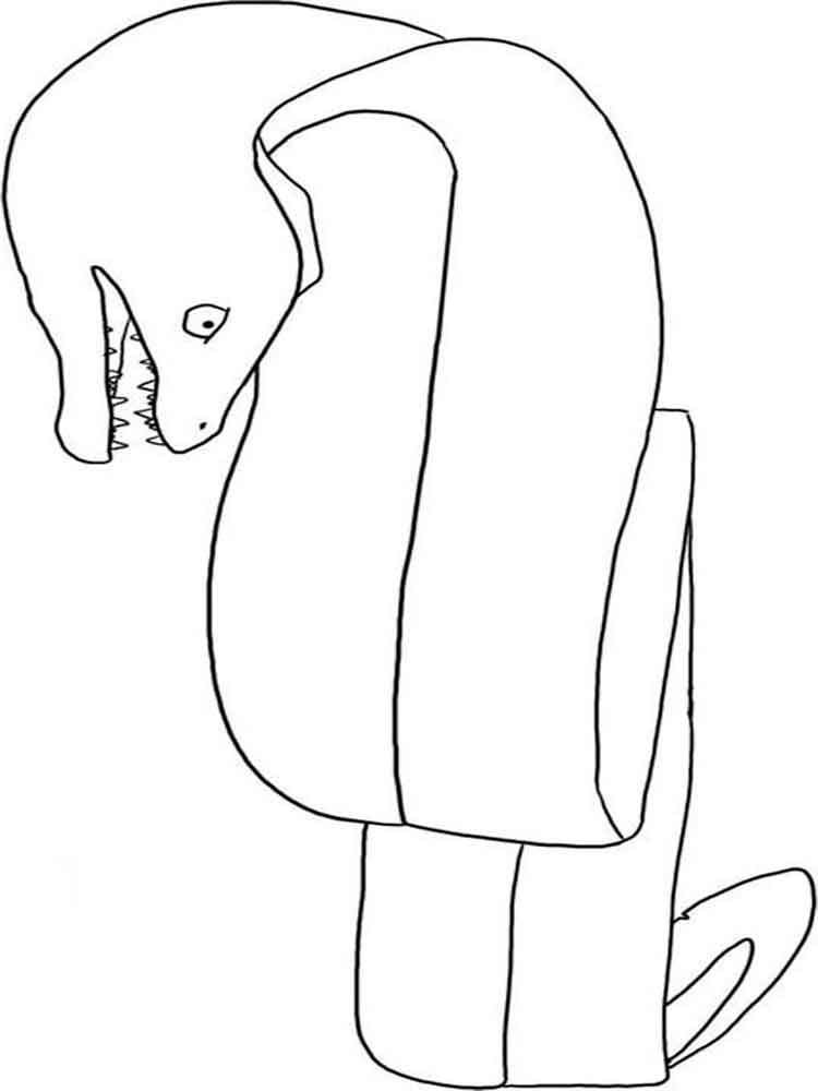 Eel coloring pages Download and