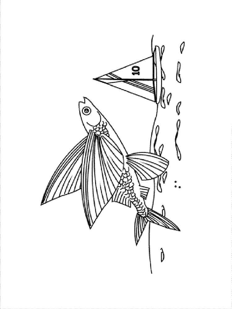 Flying Fish Coloring Pages 6
