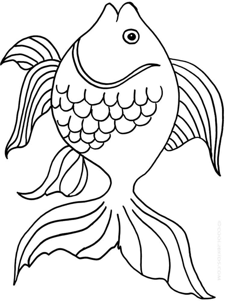 Goldfish coloring pages Download and print Goldfish coloring pages