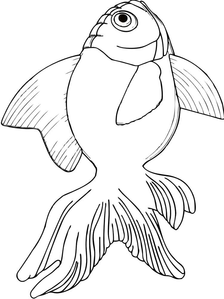 Goldfish Coloring Page Pages And Print