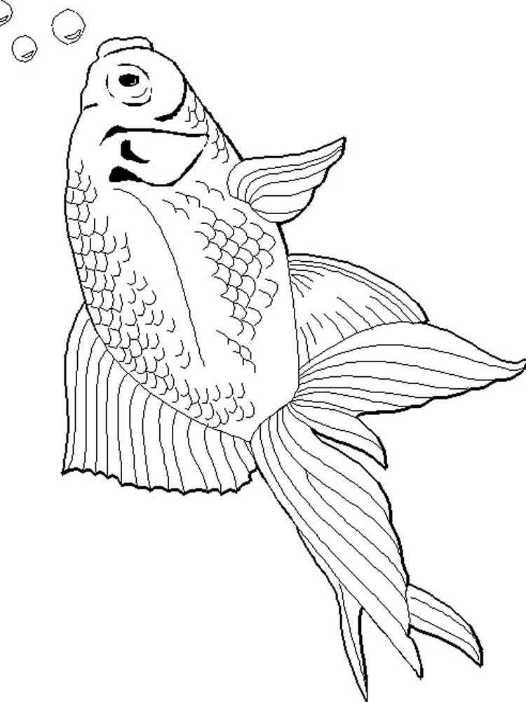 Goldfish coloring pages Download