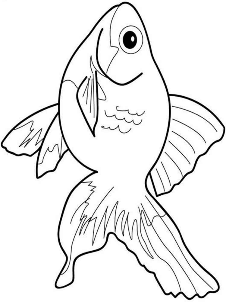 Goldfishes Coloring Pages 6