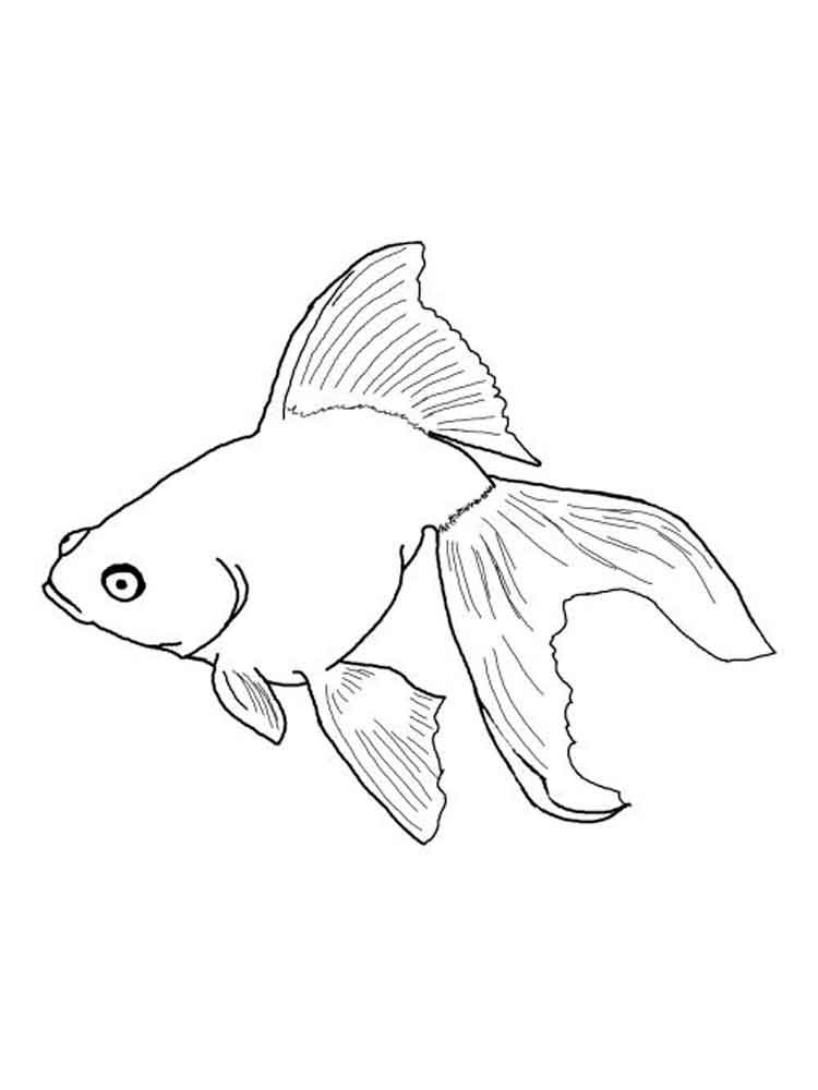 White Perch Coloring Page