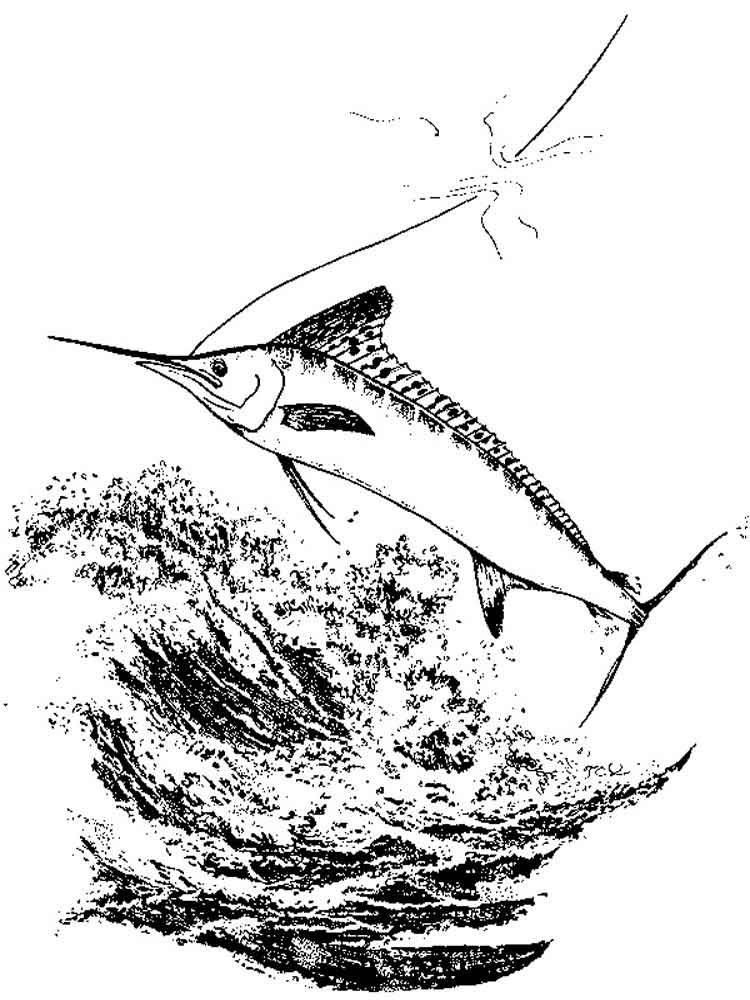 Marlin Coloring Pages 6