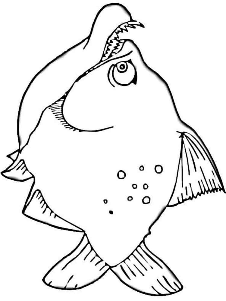Piranha coloring pages Download and print Piranha