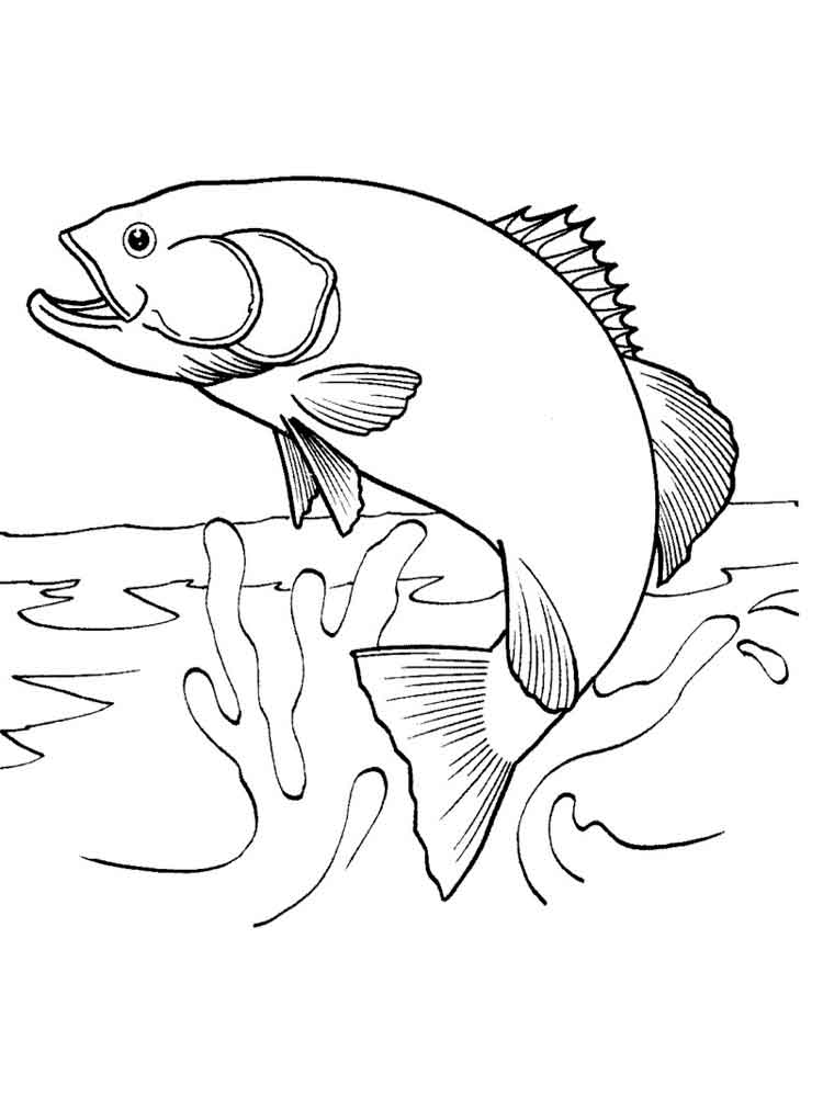 Salmon coloring pages. Download and print Salmon coloring ...