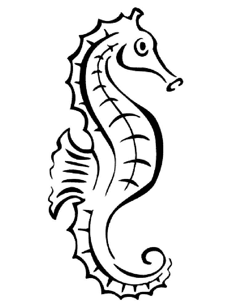 Seahorse coloring pages Download and print Seahorse