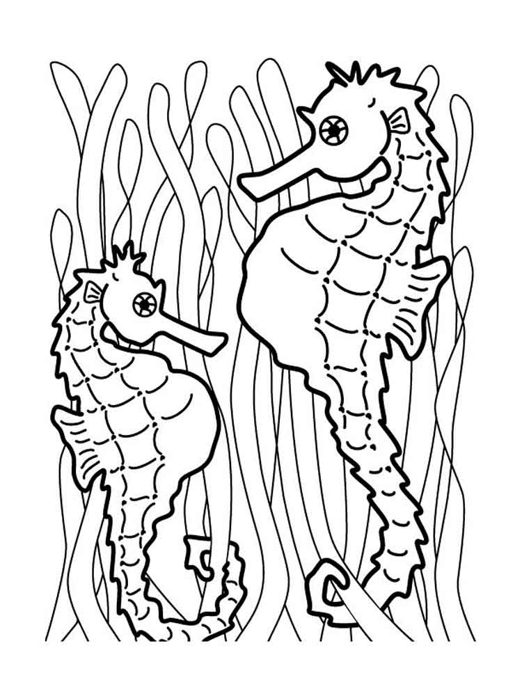 ... Seahorse-coloring pages-5 ...