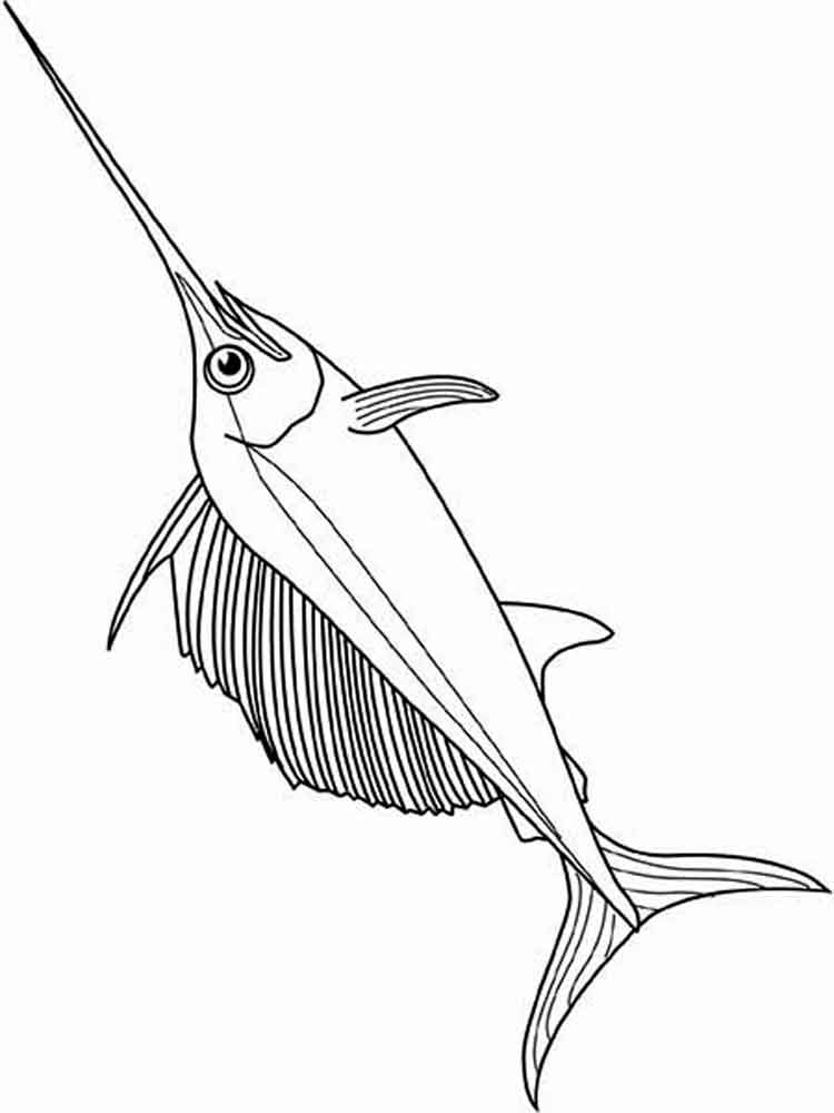 Swordfish Coloring Pages 9