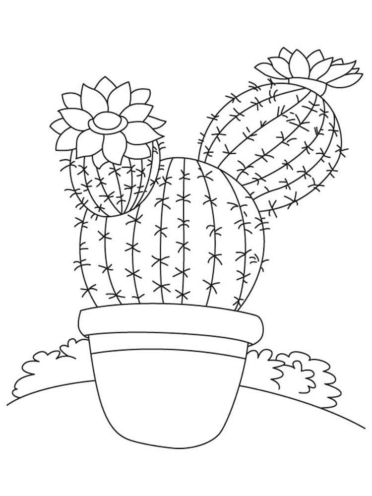 cactus coloring pages plants - photo#25