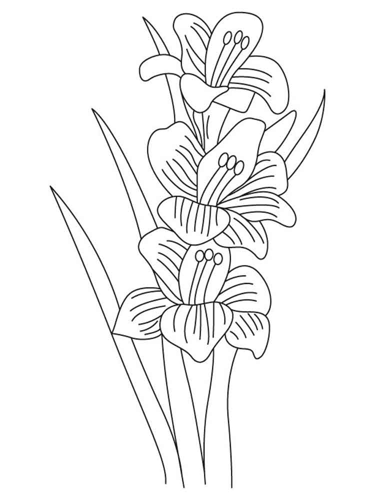 flower coloring pages and facts - photo#14