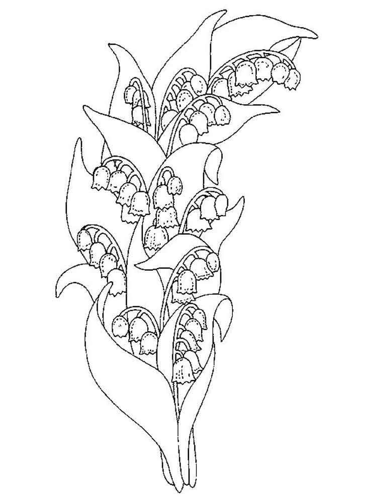 Lily of the valley coloring pages. Download and print Lily ...