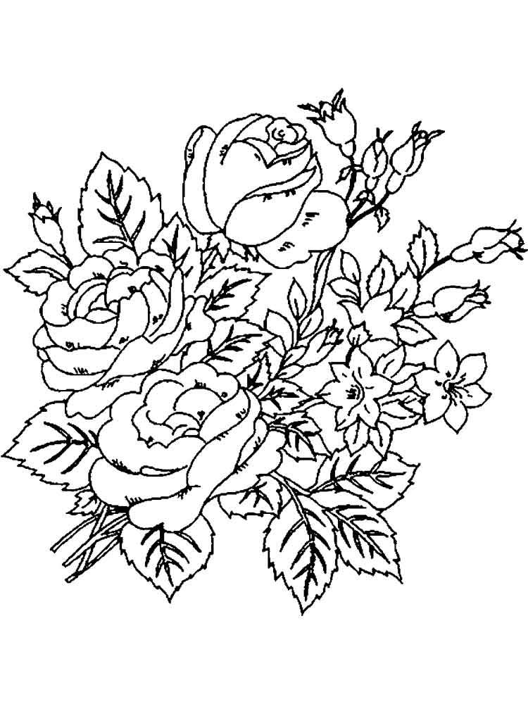 Peony Flower coloring pages Download