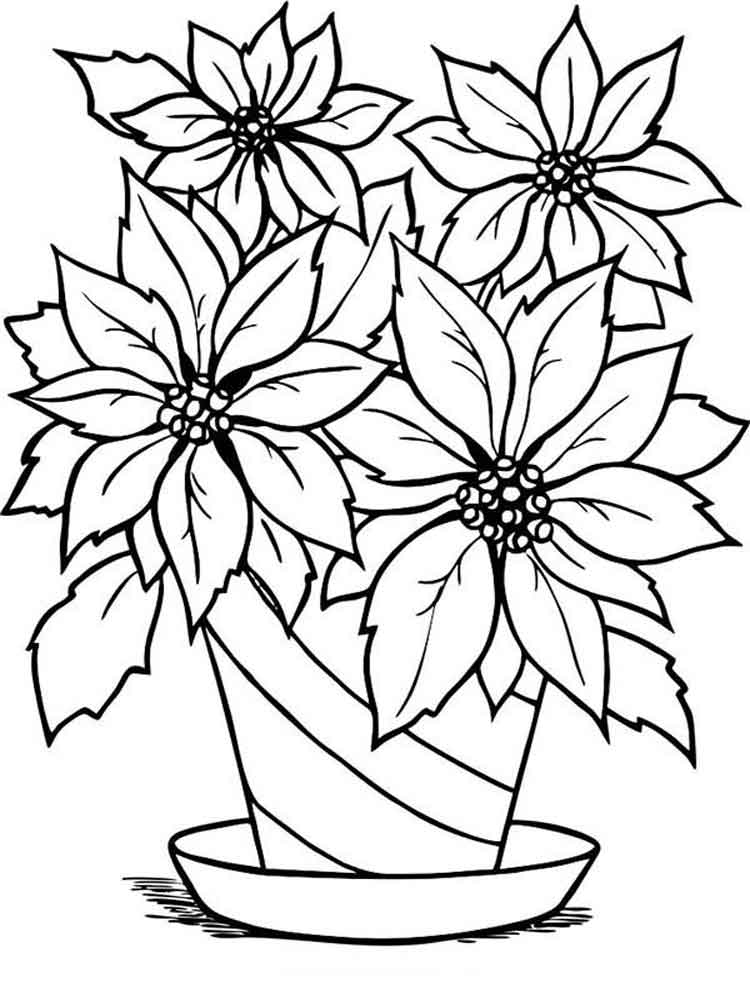 flower coloring pages and facts - photo#18