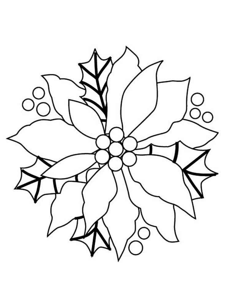 Poinsettia Flower coloring pages. Download and print ...