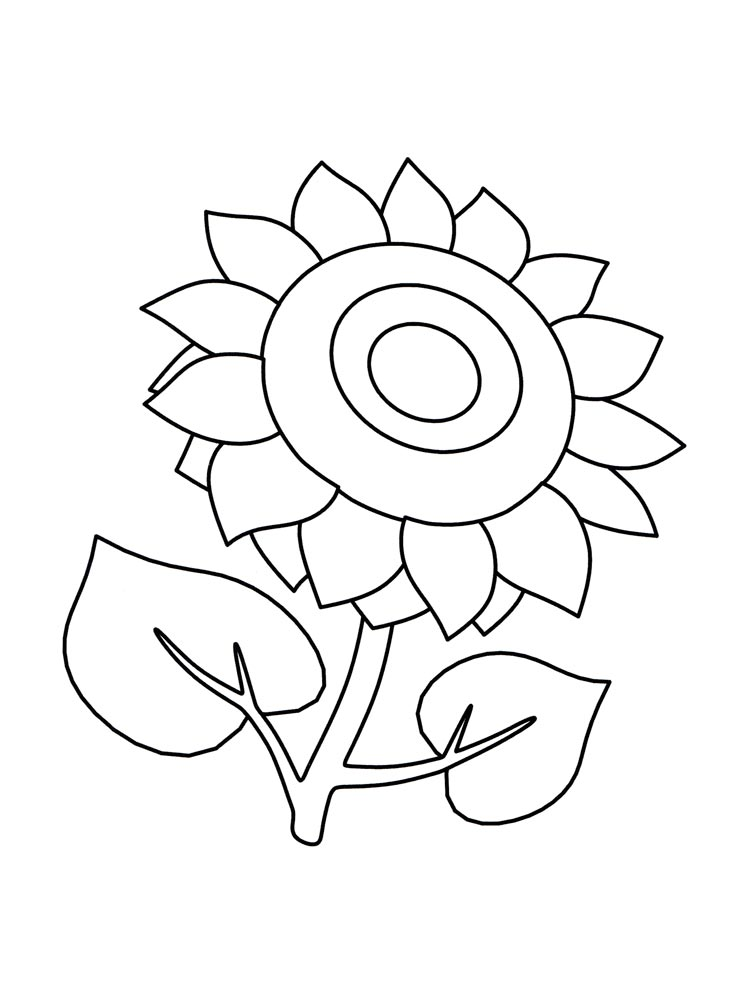 sunflower coloring pages download and print sunflower