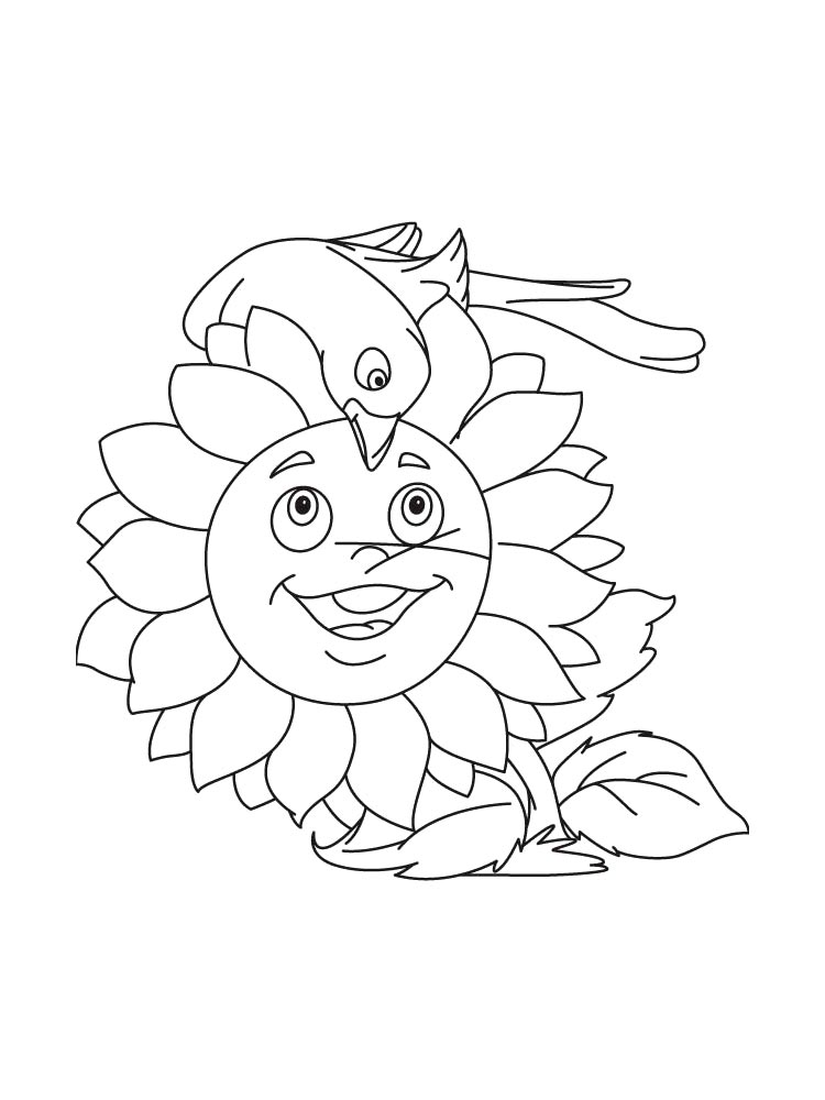 Sunflower Flower Coloring Pages 3
