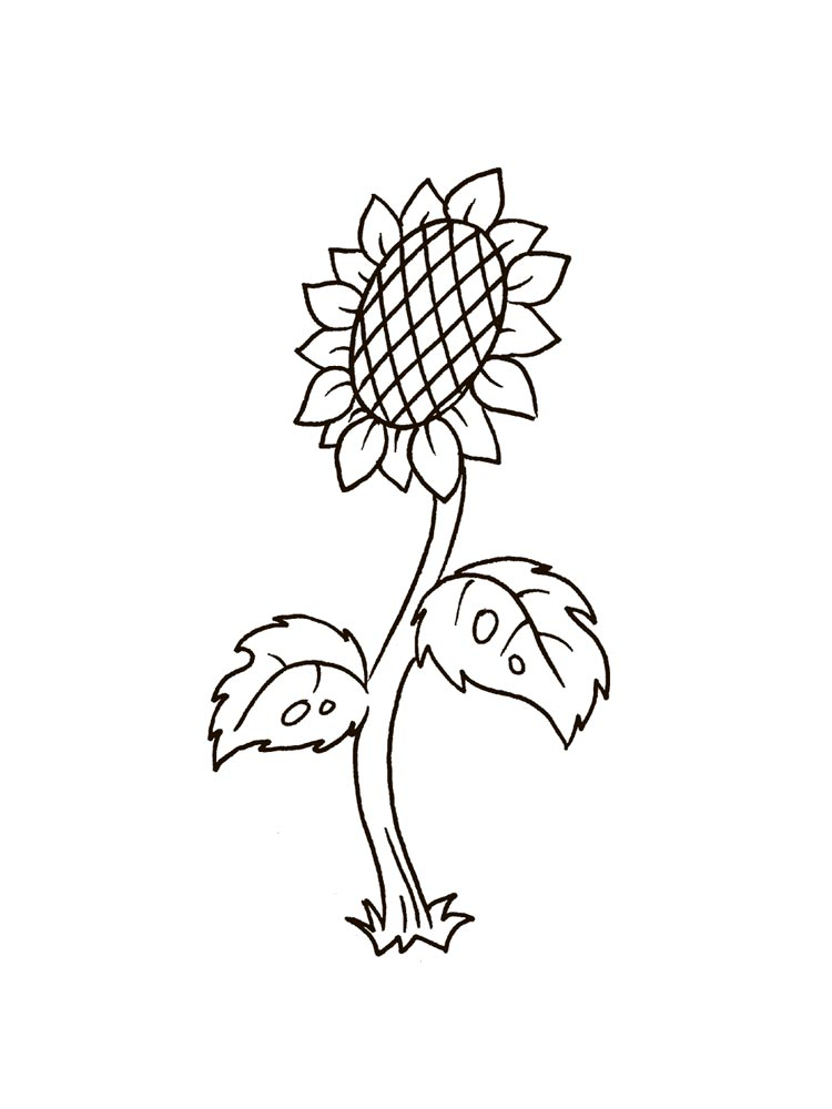 Sunflower coloring pages. Download and print Sunflower ...