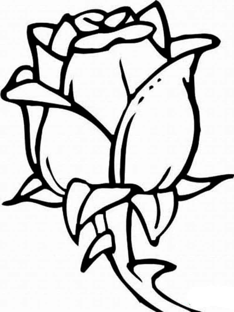 Rose coloring pages. Download and print Rose coloring pages