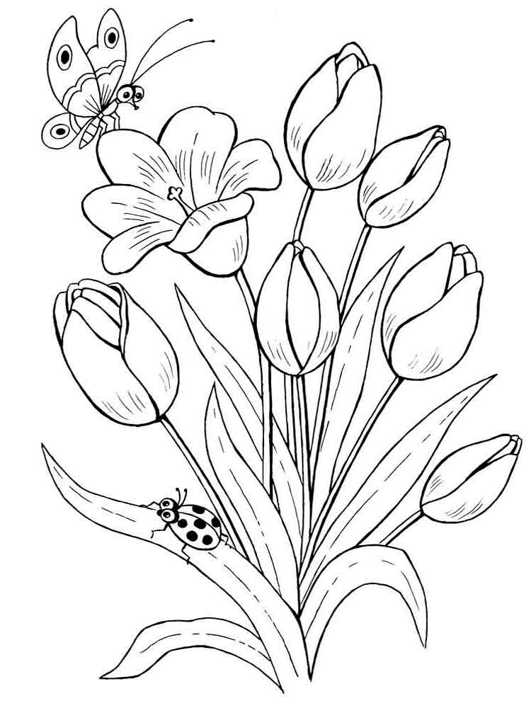 Tulip Flower Coloring Pages 10