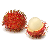 Rambutan coloring pages