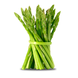 Asparagus coloring pages
