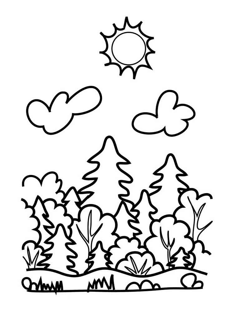 Forest Coloring Pages Download And Print Forest Coloring