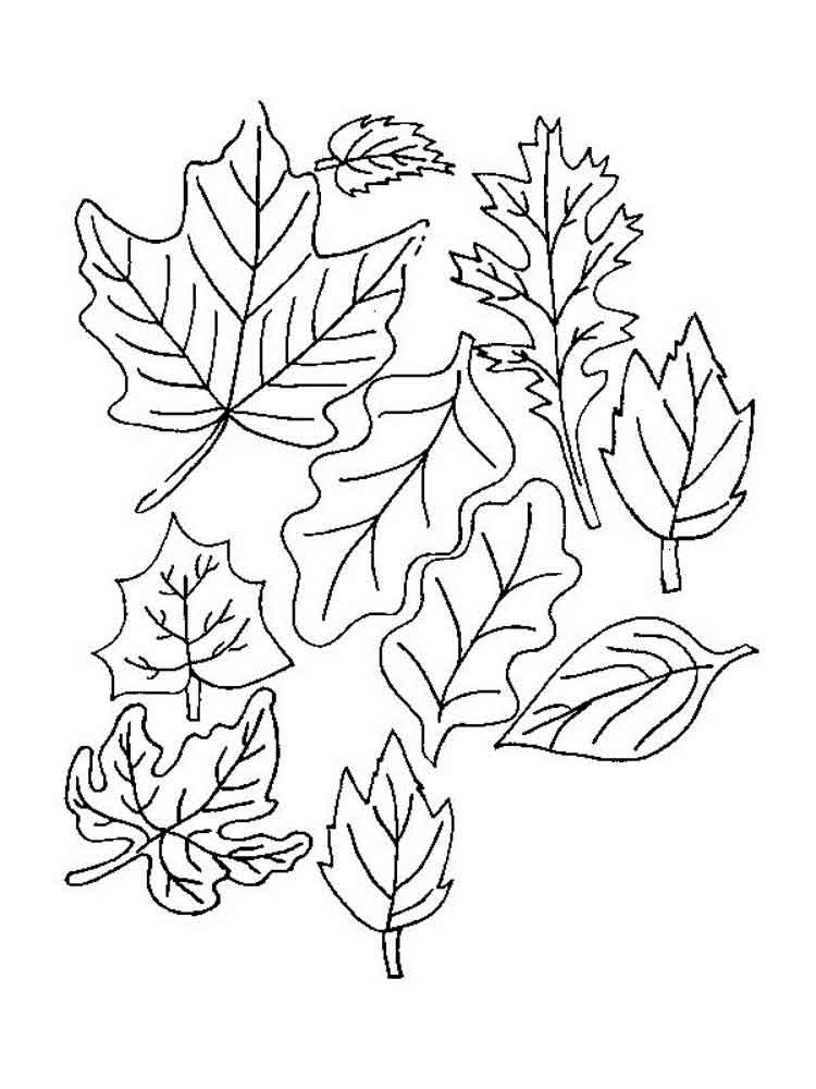 Leaves coloring pages. Download and print leaves coloring ...