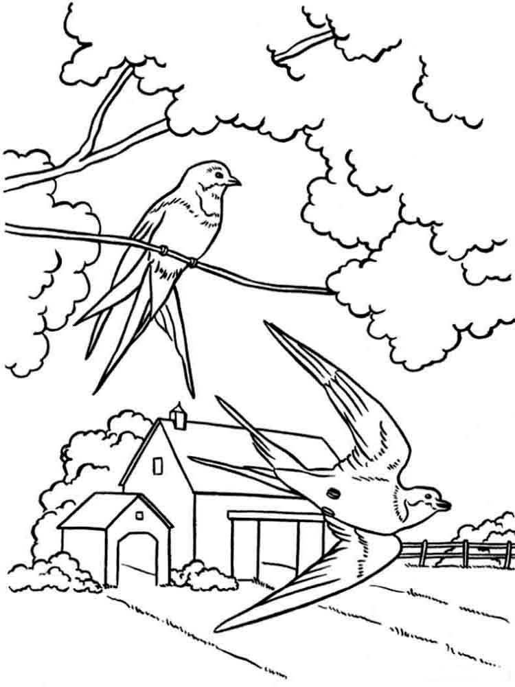 Spring coloring pages. Download and print spring coloring ...