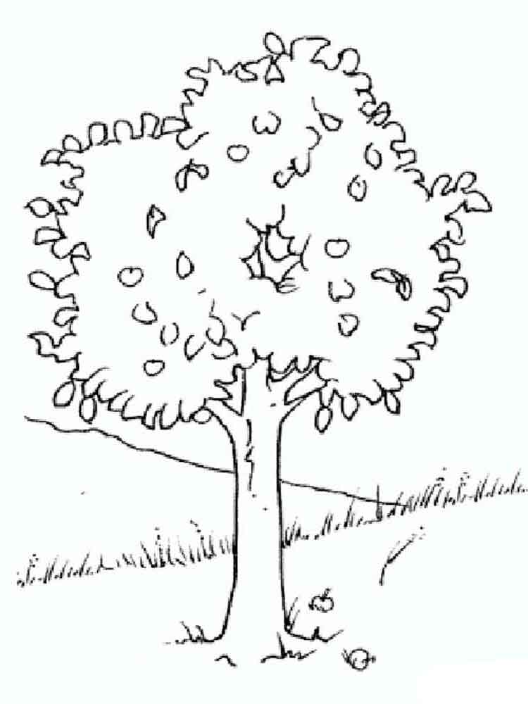 Trees coloring pages Download