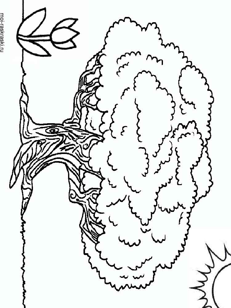 Baobab Tree coloring pages for