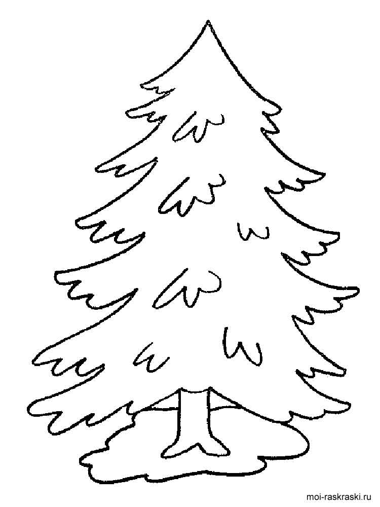 california redwood coloring pages - photo#40