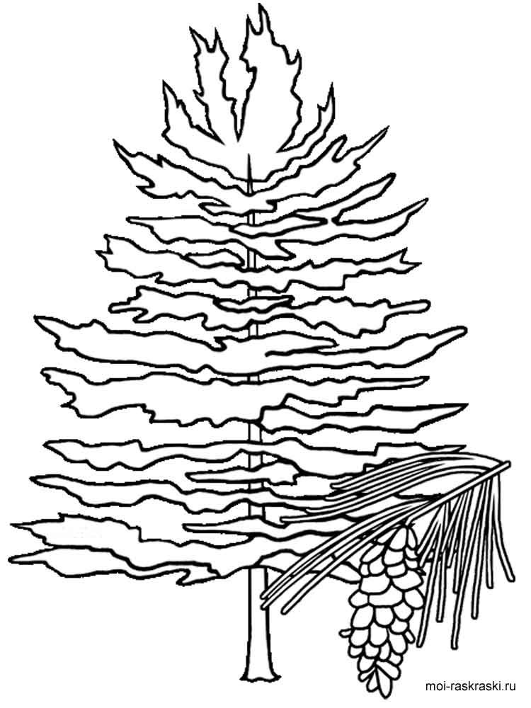Flag Of Idaho Coloring Page Free Printable Coloring Pages Coloring