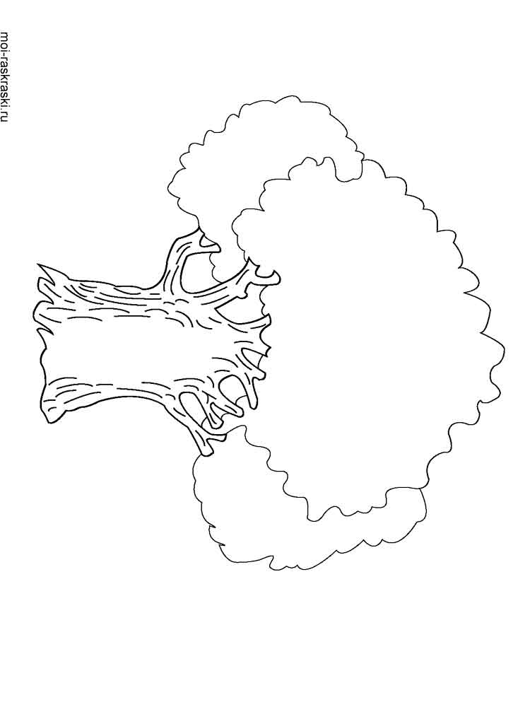 coloring pages of oak trees   Oak Tree coloring pages for kids. Free Printable Oak Tree ...
