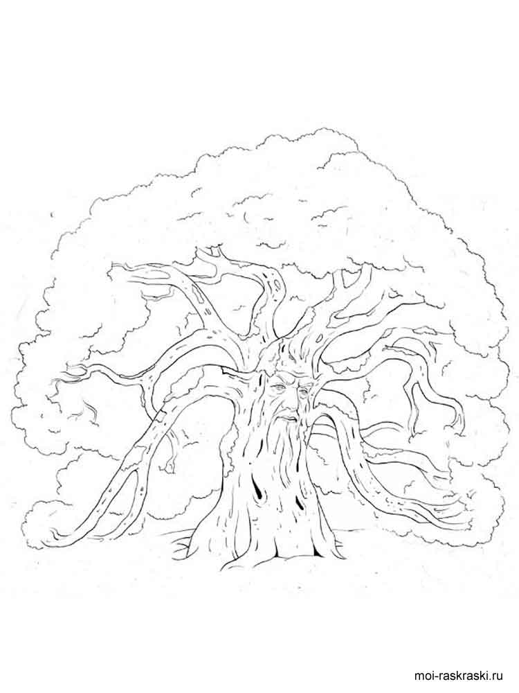 free oak tree coloring pages - photo#10