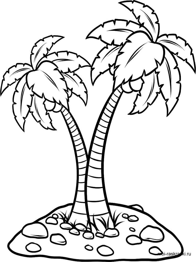 Palm Tree Coloring Pages For Kids Free Printable Palm
