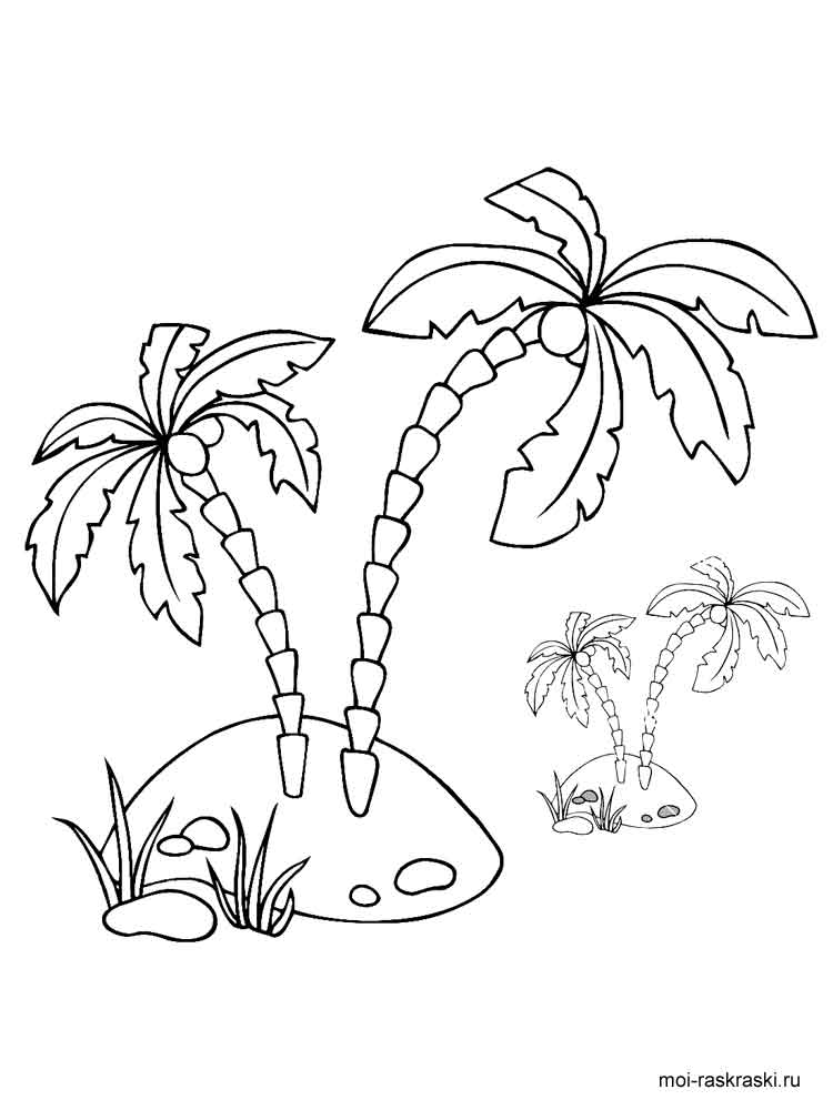 palm trees coloring pages - photo#22