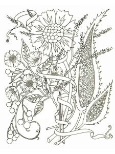 adult-coloring-pages-flowers-19